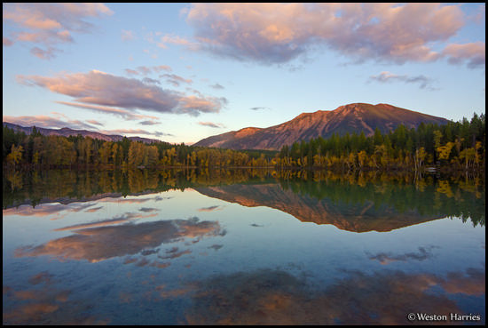 - Fall Colors Reflected in Half Moon Lake at Sunset, West Glacier, MT -