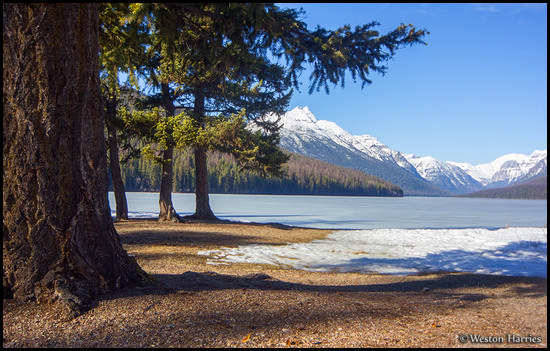 - Spring at Bowman Lake, Glacier NP -