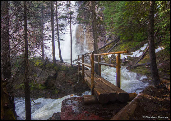 - Footbridge Leading to Virginia Falls, Glacier NP -