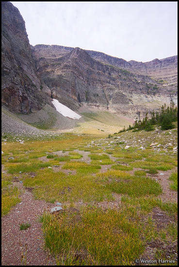 - Windy Creek Basin, Glacier NP -