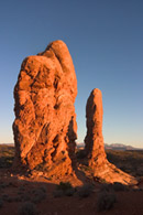 - Sandstone Tower Formations in the Windows Area at Sunset, Arches NP -