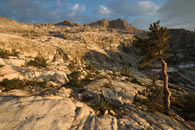 - Sunset Light on a Ridge Above Pear Lake, Sequoia NP -