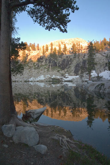 - Heather Lake Framed by a Pine Tree, Sunset, Sequoia NP -