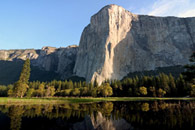 - Trees Reflected in a Spring Pond Below El Capitan, Sunrise, Yosemite NP -
